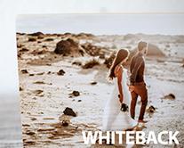 Whiteback